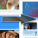 Neueröffnung Homepage