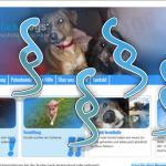 blue:dogs und die DSGVO